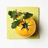 A Yellow Tomato on a Yellow Cloth with Leaves