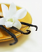 Vanilla Beans with White Orchid on a Gold Plate