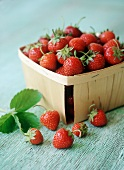 Fresh Strawberries in and Beside a Container