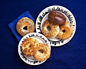Assorted Bagels on New York City Plates