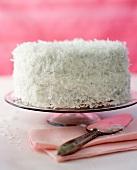 Coconut cake on cake stand
