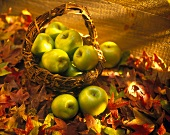 Granny Smith Apples in a Basket with Autumn Leaves