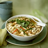 Noodle soup with chicken, nuts and coriander leaves