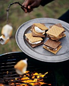 Marshmallows and s'mores on barbecue in open air (USA)