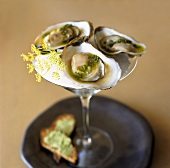 Three oysters with pesto in a Martini glass