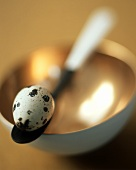 Quail egg on a spoon