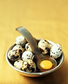 Quail Eggs in a Bowl with a Yolk on a Ladle