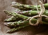 Bundle of green asparagus on jute sack