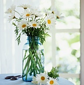 Marguerites in blue glass in front of window