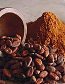 Kakaobohnen und Kakaopulver