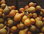 Fresh Boskop pears