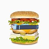 A Book Burger