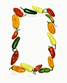 A Frame Made of Assorted Hot Peppers