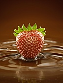 A Fresh Strawberry in a Pool of Chocolate