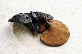 Black Rieshi Mushroom