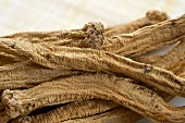 Dang Shen (Chinese Herb) Close Up