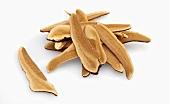 Ganoderma Lucidum (Reishi Mushroom)