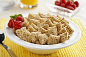 A Bowl of Miniature Shredded Wheat Cereal with Strawberries