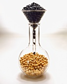 Dried Black Beans Falling Through a Funnel into a Beaker of Soybeans
