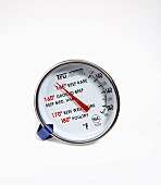 Meat thermometer (USA)