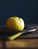 Quitte auf Teller mit Messer