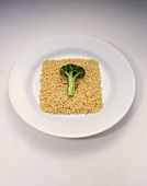Brown Rice with a Broccoli Floret on a Plate