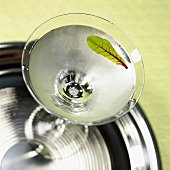 Overhead of Martini Garnished with a Leaf Served on Silver Tray