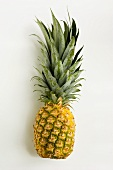 A Whole Fresh Pineapple