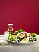 Spinach Salad with Hard Boiled Eggs and Red Onions