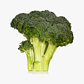 Raw Broccoli Bunch on White Background