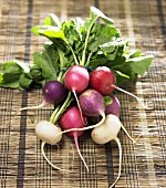 Colorful Bunch of Red, Purple and White Radishes