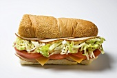 Turkey sub with lettuce, tomato and cheese