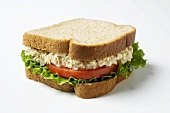 A Tuna salad sandwich with lettuce and tomato on whole wheat bread