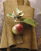 A Freshly Picked Apple with Stem and Leaves