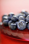 Close Up of Blueberries on Red Glass Plate