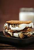 S'mores on a Plate with a Glass of Milk