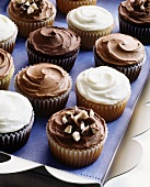 Assorted chocolate and vanilla cup-cakes