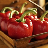 Red Bell Peppers in a Wooden Basket with Dew Drops, Close Up