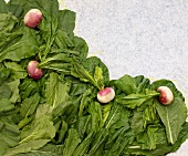 Fresh Turnip Greens with Turnips