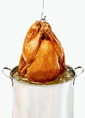 Deep Fried Turkey Hanging Above Pot of Hot Oil, White Background