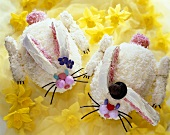 Two Bunny Rabbit Shaped Cakes for Easter on Daffodils