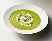 Creamy Pea Soup with Cream Swirl and Chive Garnish in a White Bowl; White Background