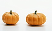 Two mini-pumpkins