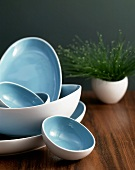 An assortment of blue and white bowls and dishes