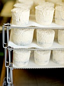 Stacked Trays of Chevre Goat Cheese