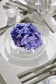 Festive place-setting with blue hydrangea in soup bowl
