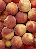 Many peaches (full-frame)