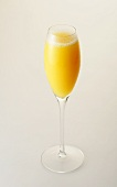Mimosa in sparkling wine glass