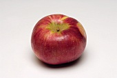 A red apple (variety: Cortland)