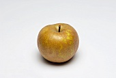 A Golden Russet apple
